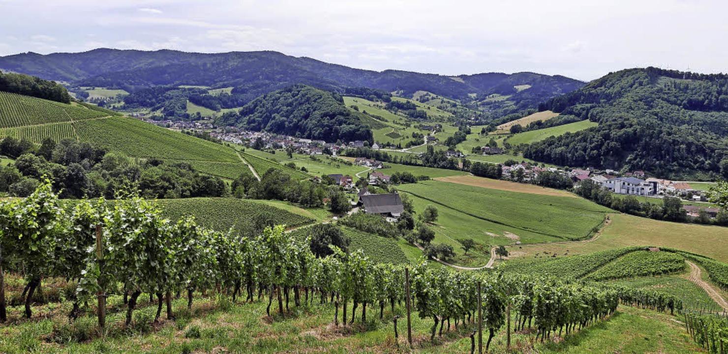 Naturbelassene Pfade und herrliche Ausblicke zeichnen den Bergbaurundweg aus.     Foto: Horst Dauenhauer