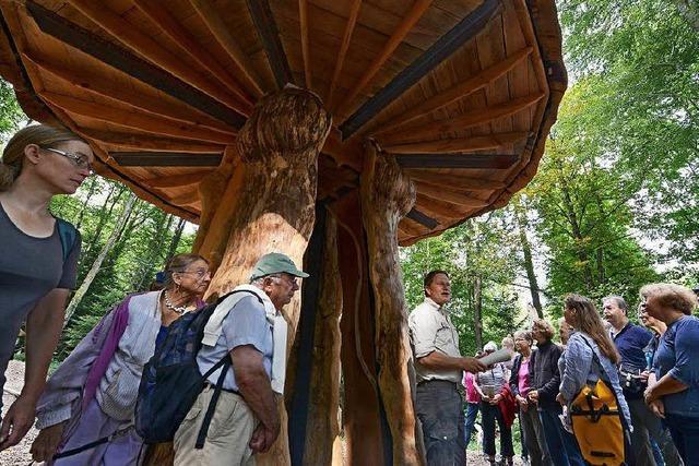80 BZ-Leser wandelten auf dem Pilz-Skulpturen-Pfad