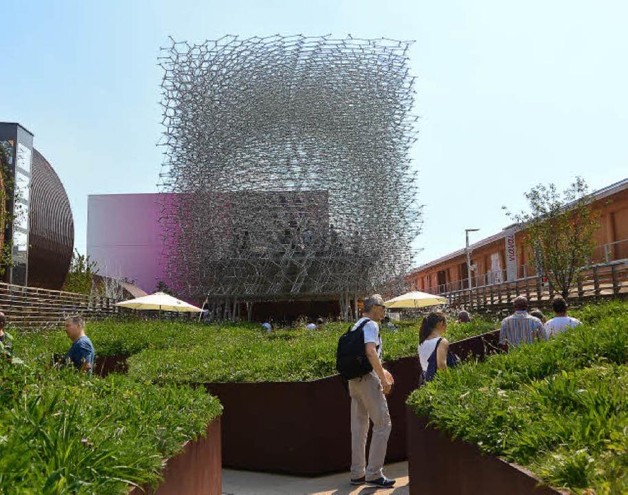 Der englische Pavillon bei  der Expo 2...bildet eine begehbare Bienenwabe nach.  | Foto: Andrea Schiffner