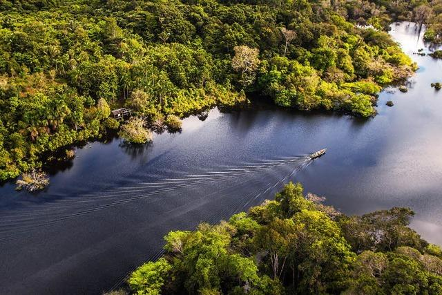 Fliegende Flüsse - Deshalb ist der Amazonas so wichtig fürs Klima