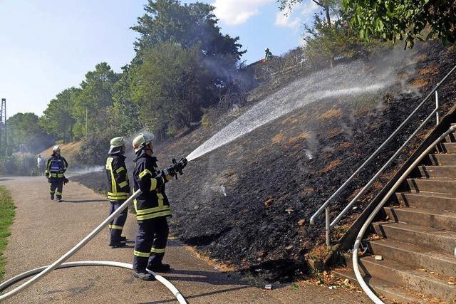 Einen Flächenbrand