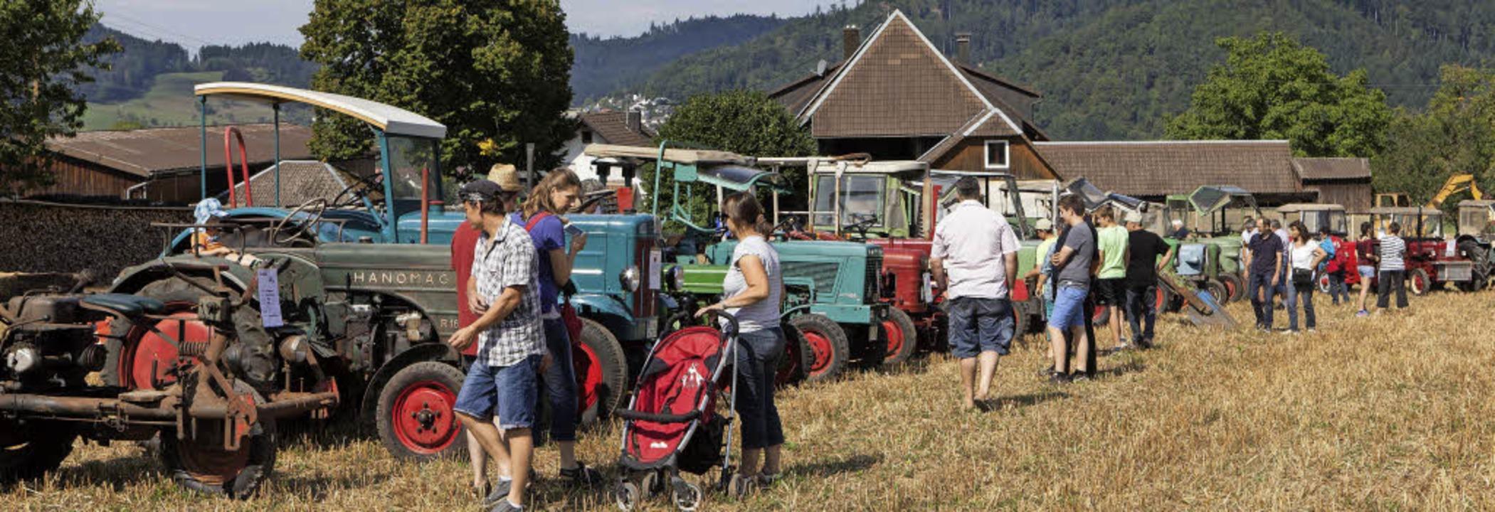 Fasziniert besichtigten zahlreiche Besucher die landwirtschaftliche Ausstellung.  | Foto: Gabriele Zahn