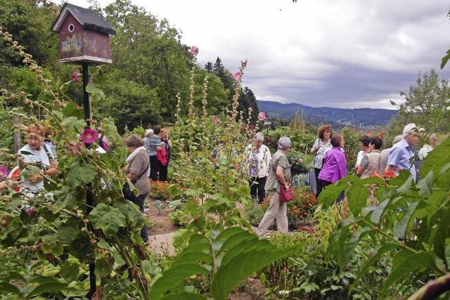 Blühendes Paradies im Bauerngarten