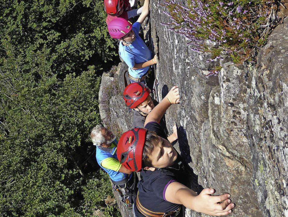 Klettersteig Kinder : Kind wald erlebnispark kinder klettern auf hohe klettersteig