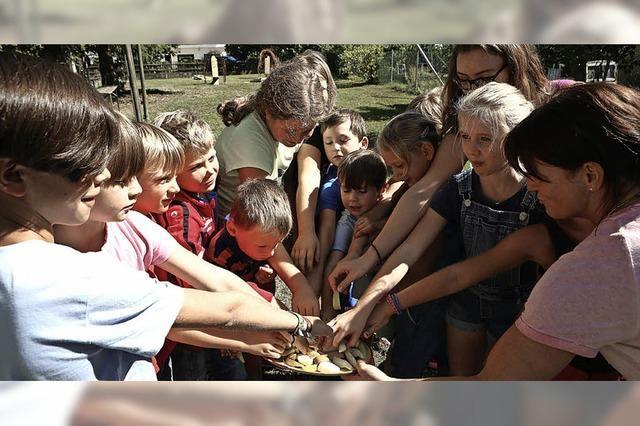 Kinder werfen Maissäckchen auf ein Brett mit Loch