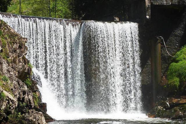 Umweltschützer kritisieren Wasserkraftwerk in der Wutachschlucht