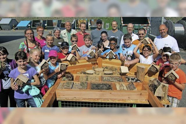 Kleine Bastler bauen neue Bleibe für wilde Bienen