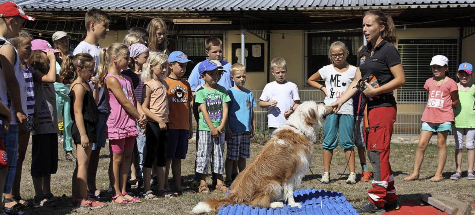 Konzentriert lauschten die Kinder den ... Deutsche Schäferhunde in Herbolzheim.  | Foto: Christiane Franz