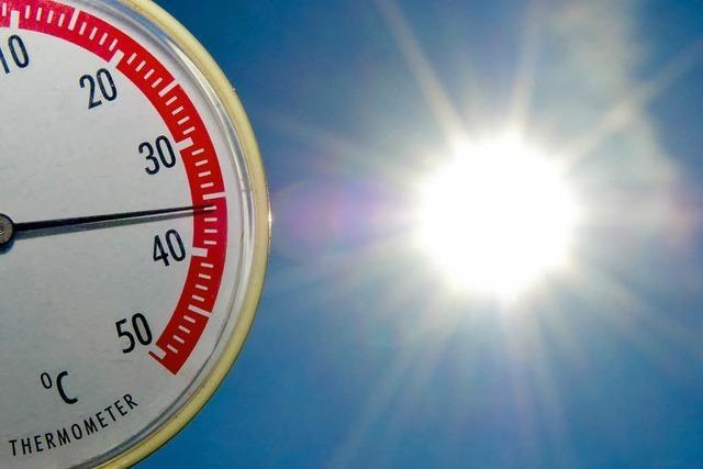 Sommer mit 41 Hitzetagen