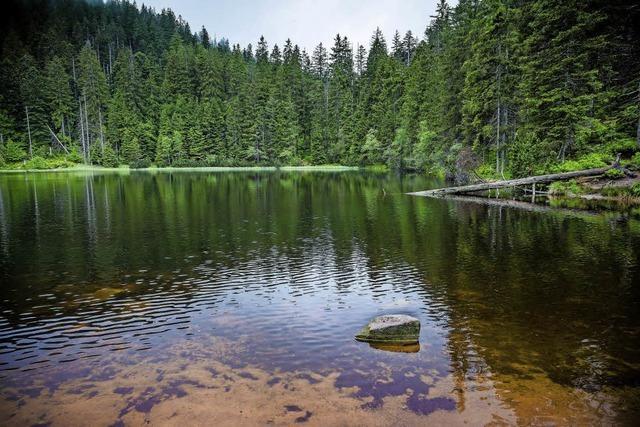 Mystische Momente: Der Nationalpark entfaltet seine Schönheit