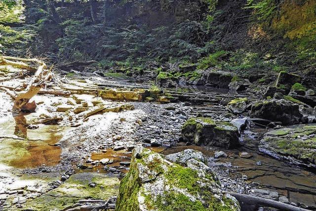 Spalten schlucken Wasser der Steina