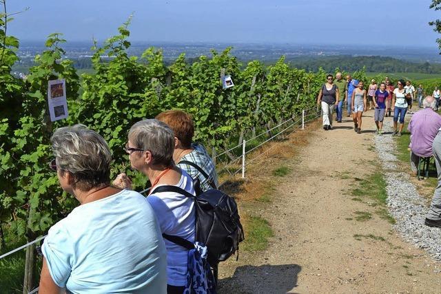 Sechs Stationen mit Wein und Essen entlang der Rebgemeinden