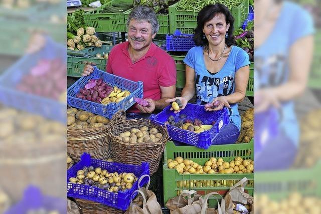 Forchheimer Kartoffelbauer in der SWR-Landesschau
