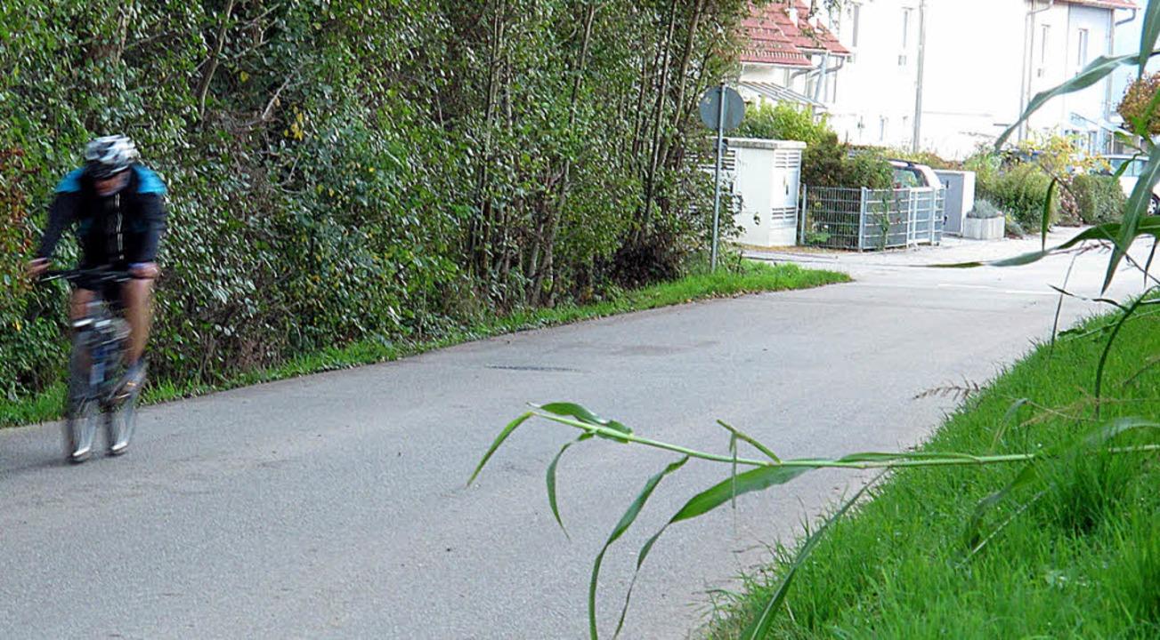 Tempo 50 trägt auf der Mühlenstraße zw...lem zur Sicherheit der Radfahrer bei.     Foto: Jutta Schütz