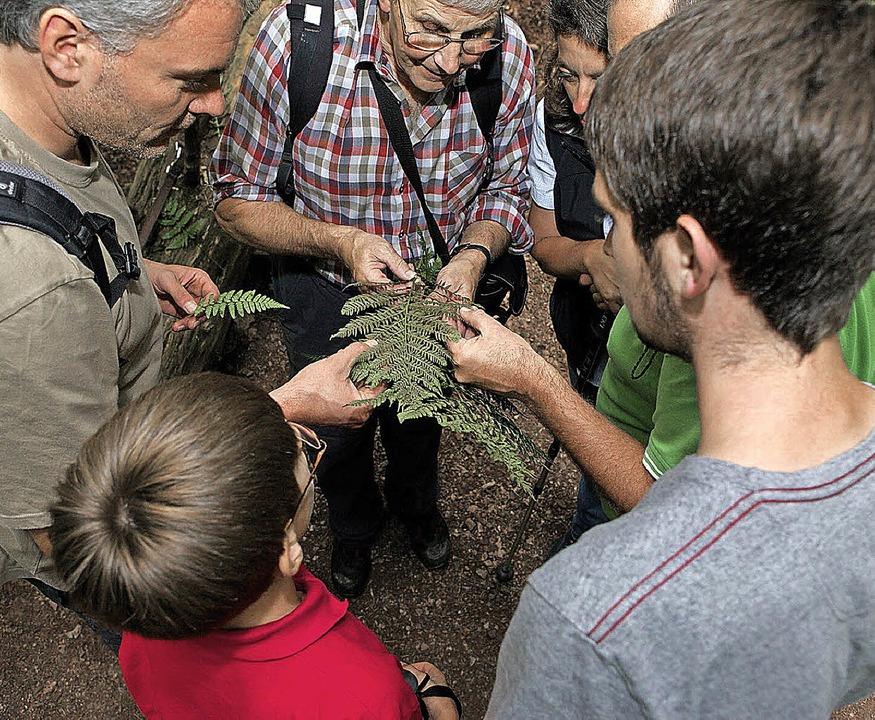 Mit dem Gästeführer Natur und Kultur im Kreis entdecken.     Foto: privat