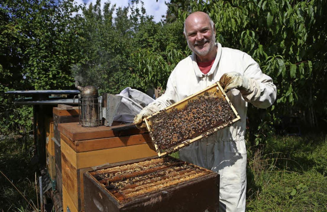 Süße Blütenhonige erntet Peter Stocker von seinen 14 Bienenvölkern.   | Foto: christoph breithaupt