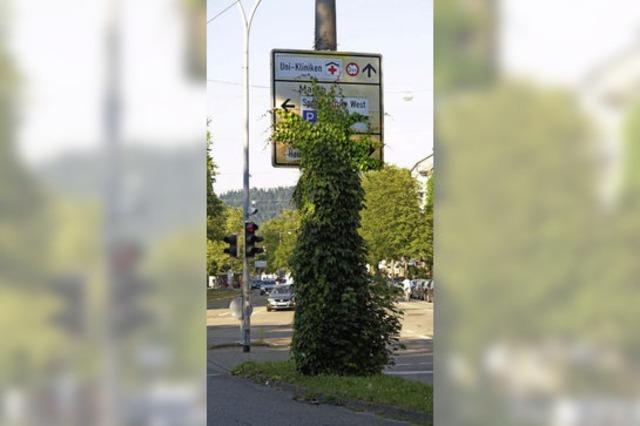Der Ruf der Green City