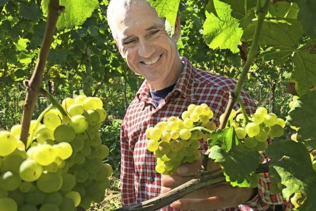 Ein Botschafter des Tuniberger Weins