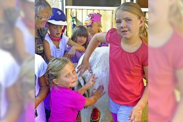 Kinder feiern Finale mit Ponys
