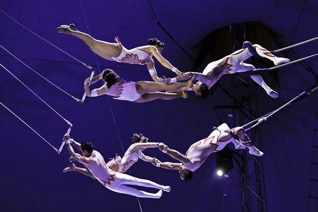 Gewinnen Sie Freikarten für den Circus Nock in Basel