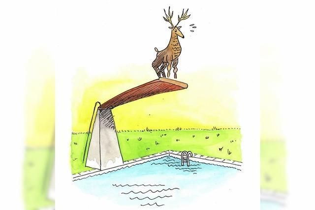 Schwarzwald-Cartoons von Klaus Karlitzky in Breitnau