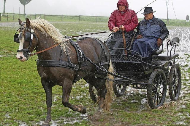 Ross und Reiter trotzen dem Regen