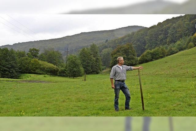 Pferdegnadenhof nimmt neuen Anlauf
