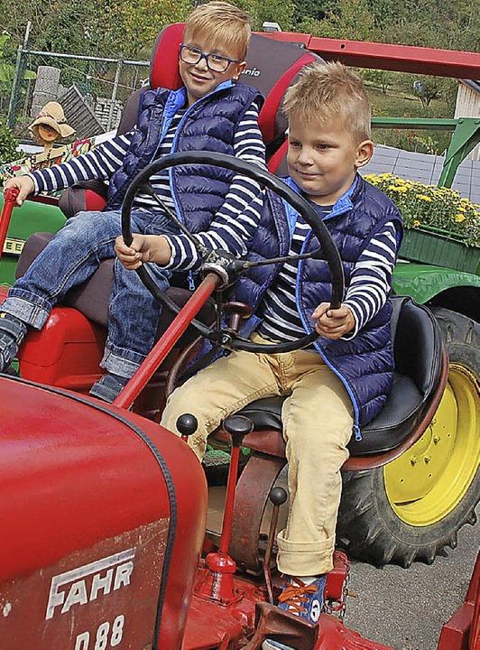 Traktoren habe  Anziehungskraft  | Foto: Petra Wunderle