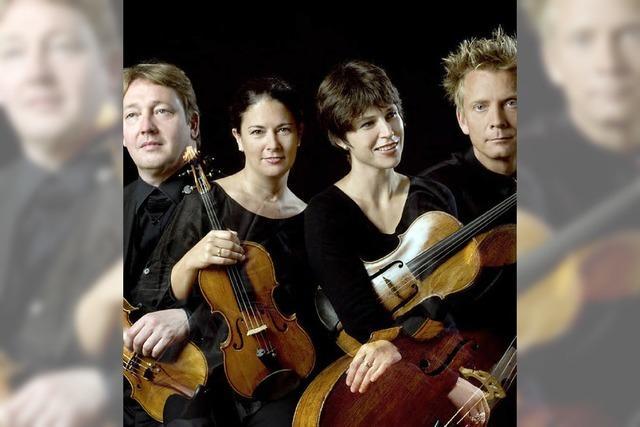 Das Minguet-Quartett konzertiert in Sulzburg und Grenzach