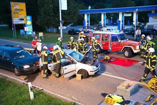 Autofahrer bremst für Katze und verursacht Unfall