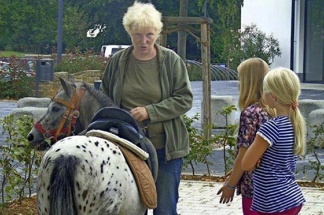 Alles für Pferde und Reiter