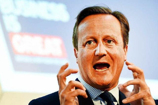 Premier Cameron mit bizarren Sex-Enthüllungen konfrontiert