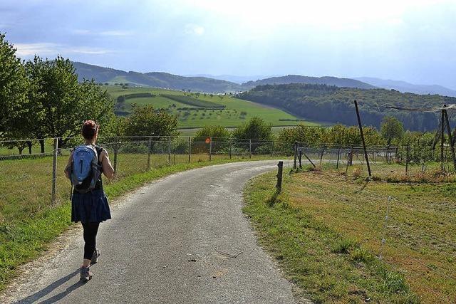 Wandern von Rheinfelden aus zur Römerstadt Augusta Raurica