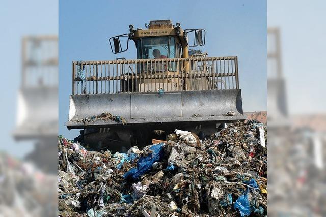 Umweltschutz von Amts wegen