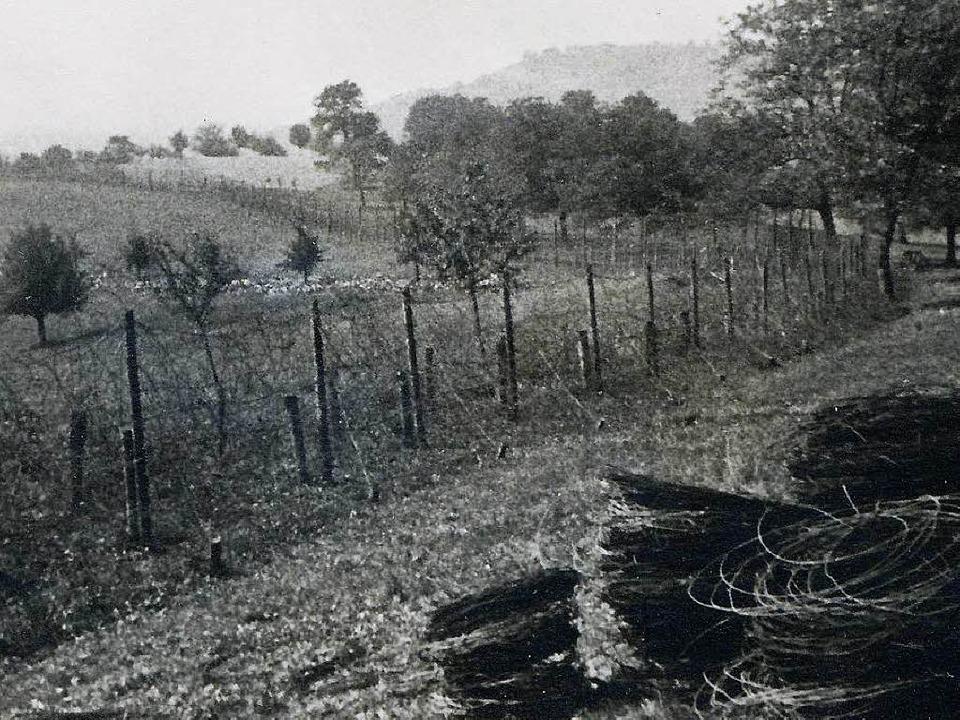 Stacheldrahtverhau am Lauf der Wiese  | Foto: Dokumentationsstelle der Gemeind