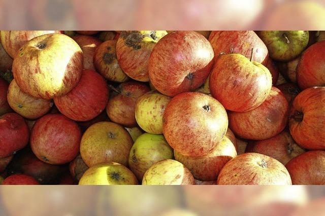 Äpfel und Birnen sinnvoll verwerten