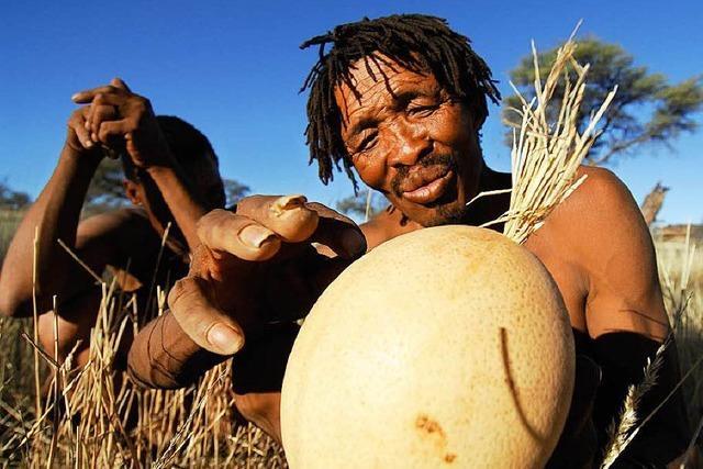Kultur der San verschwindet: Buschleute ohne Zukunft?