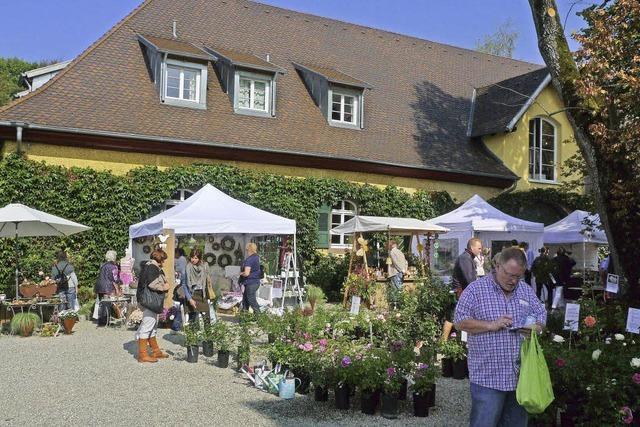 BoGart im Schloss in Bollschweil