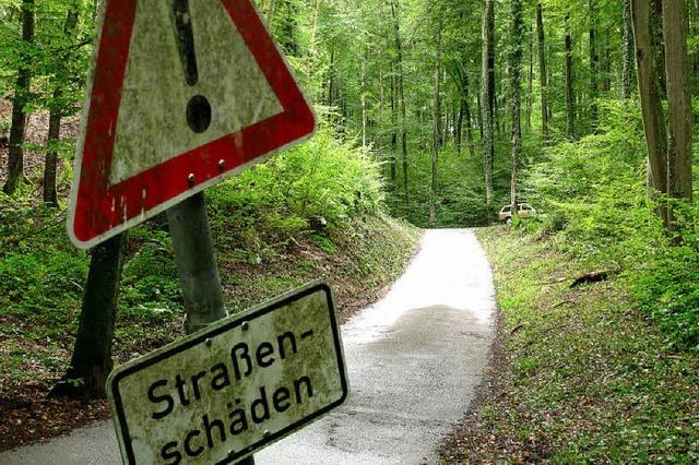 Straße durch den Hertinger Wald wird saniert - Kosten von 110.000 Euro