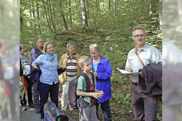 Hertener Wald zieht viele Leute an