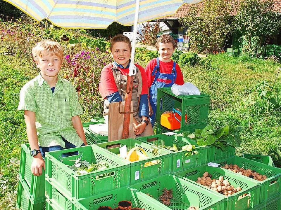 Ein Stand mit Obst, Gemüse und Nüssen  | Foto: Edgar Steinfelder