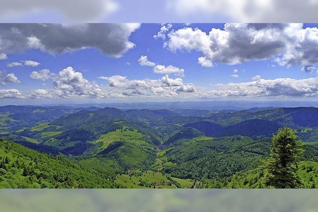 Im Hochschwarzwald 2,3 Millionen Übernachtungen bis Ende August
