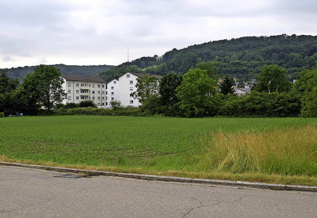 Auf dem Gelände an der Kraftwerkstraße...für 200 Flüchtlinge errichtet werden.     Foto: Sarah Nöltner