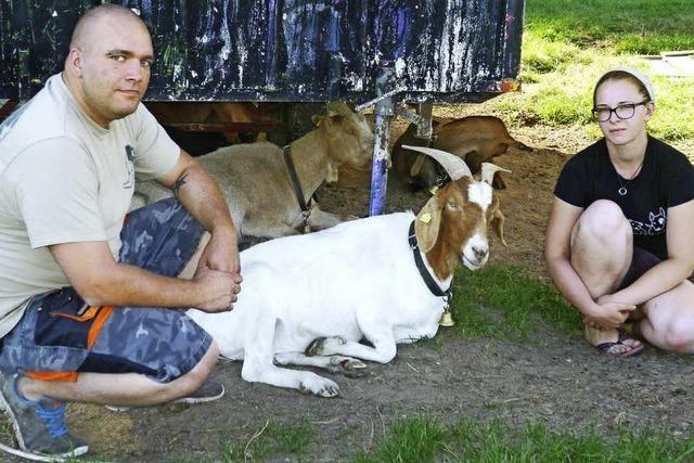 Schindlerhof in Beuggen: Brot bringt manchen Ziegen den Tod