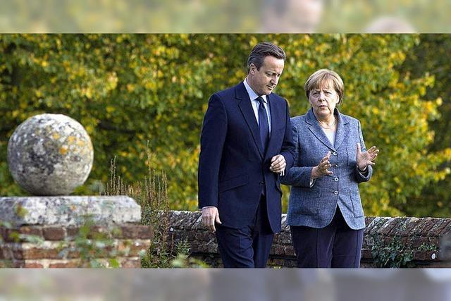 Britische EU-Gegner sammeln sich