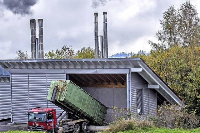 Buchenholz: Steigt der Wärmepreis?