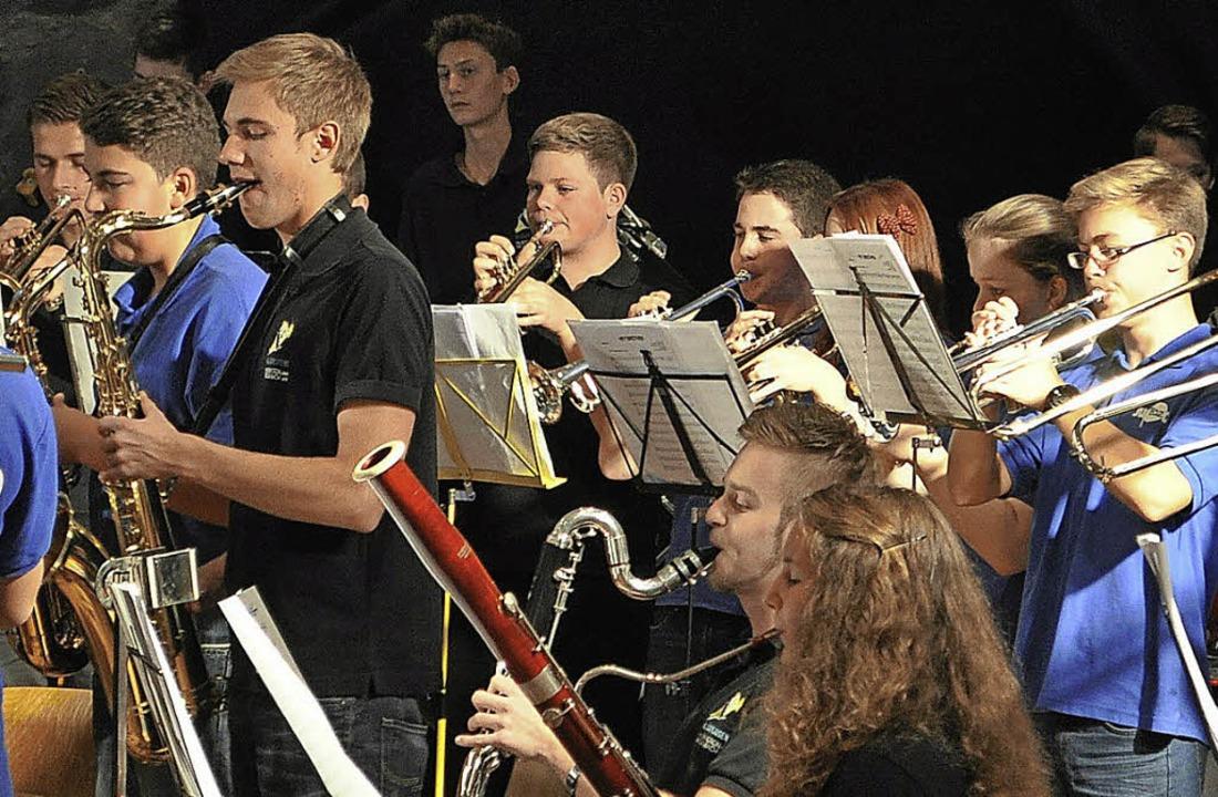 Die Jugendorchester aus Rickenbach und...gendkonzerts 2015 im Haus Marienwald.   | Foto: Sandhya Hasswani