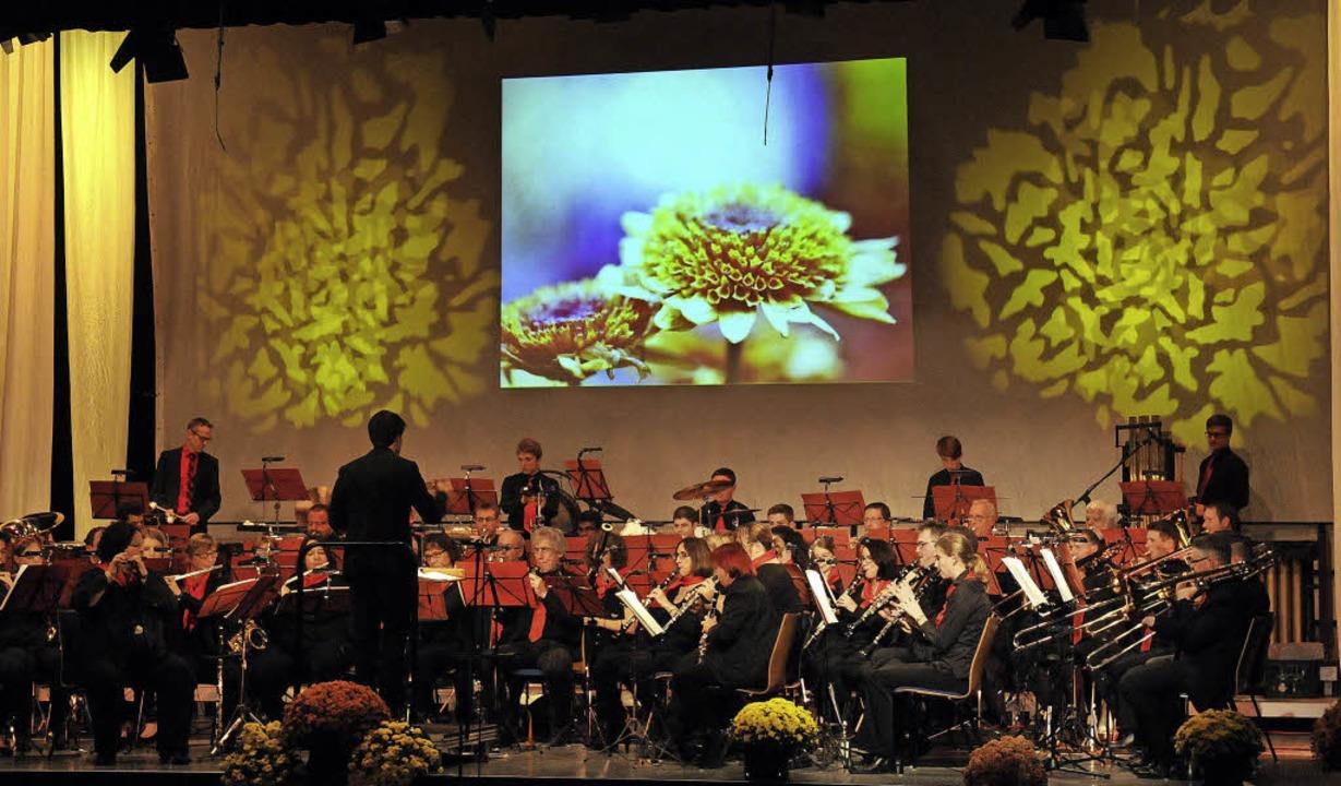 In einem stimmungsvollen Ambiente hat ...g ihre Chrysanthemengala präsentiert.   | Foto: Wolfgang Künstle