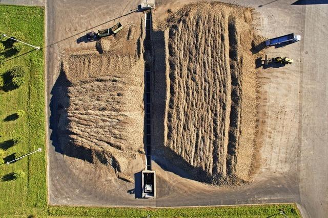 Landwirtschaft belastet die Umwelt immer noch massiv