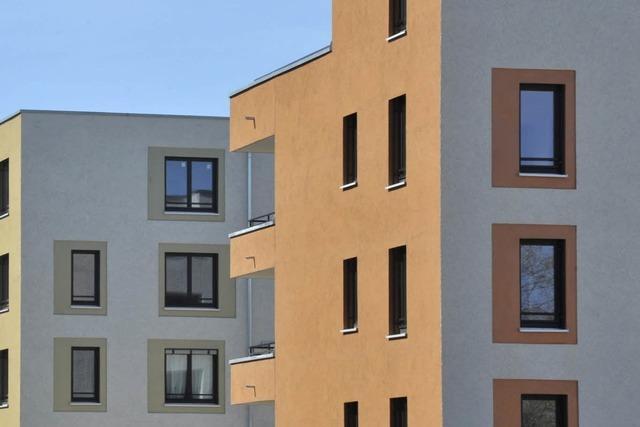 Kommt ein zweiter neuer Stadtteil für Freiburg?
